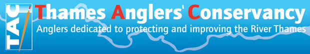 The Thames Angler's Conservancy : anglers and hydropower