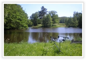 Wimsome Waters: carp fishing in France