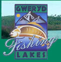 Gwery Lakes Fishery Review