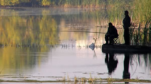 Guide to Coarse Fishing in London